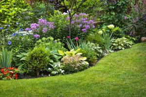 tips-and-tricks-for-efficient-flower-gardening