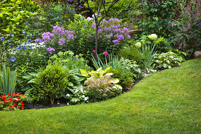 Tips and Tricks for Efficient Flower Gardening